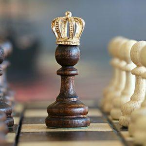 Gruen Weiss Harburg Schach Meister