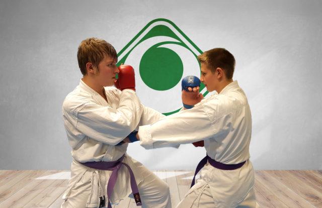 GWHarburg - Karate Szene