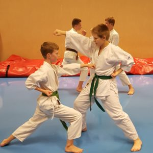 Karate Übung mit Kindern